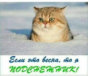 http://s4.uplds.ru/t/UHDr1.jpg